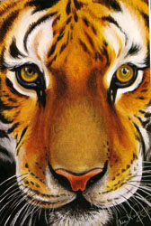 Hammond, Lee - Paint Realistic Animals in Acrylic - Click Image to Close